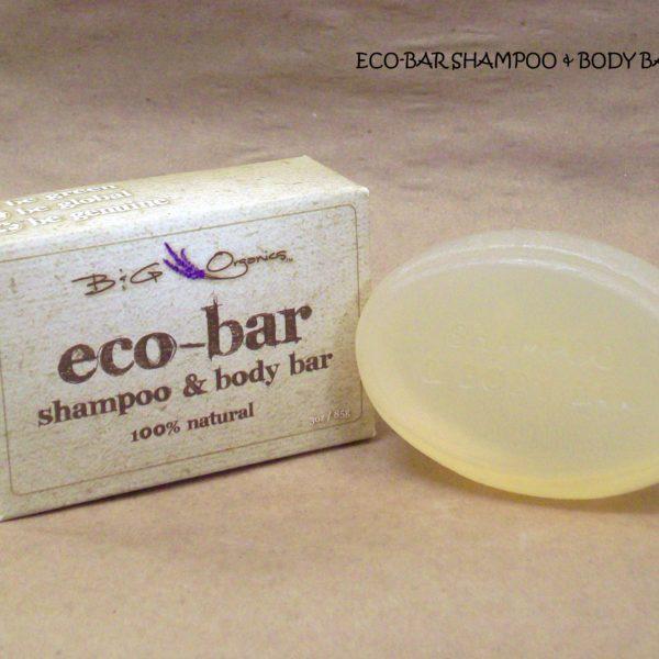 Eco Bar soap and shampoo combined